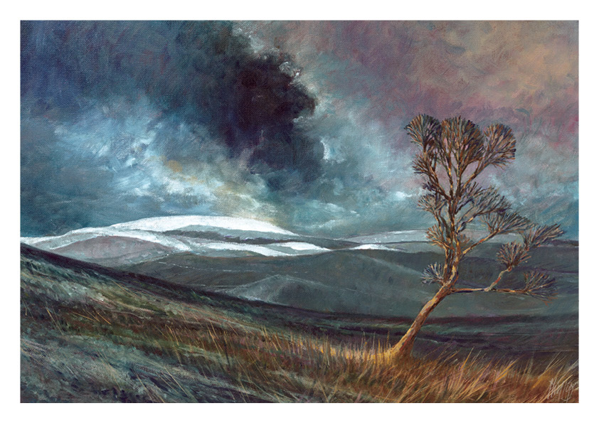 December calendar image - The Cheviot